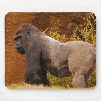 Cojín de ratón de la foto del gorila del Silverbac Alfombrillas De Ratón