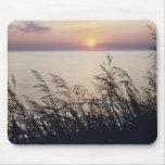 "Cojín de ratón de la foto del ""lago Michigan"" Tapete De Ratón"