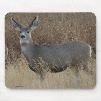 Cojín de ratón de la gama del ciervo mula D0014 Alfombrilla De Ratones