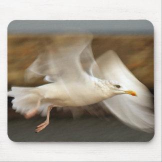Cojín de ratón de la gaviota en vuelo tapete de ratón