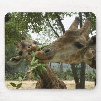 Cojín de ratón de la jirafa alfombrilla de ratones