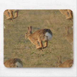 Cojín de ratón de la lupulización del conejo alfombrilla de ratones