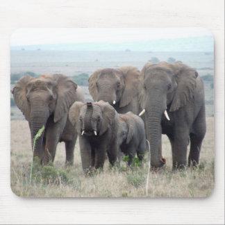 cojín de ratón de la manada del elefante tapetes de raton