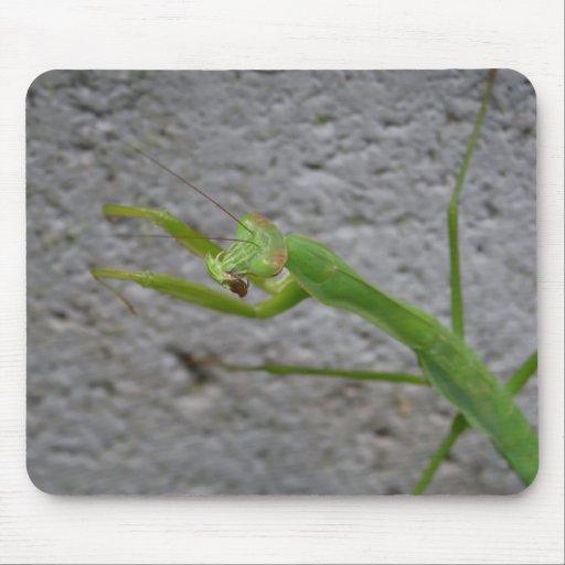 Cojín de ratón de la mantis religiosa alfombrilla de ratón