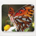 Cojín de ratón de la mariposa alfombrilla de ratón