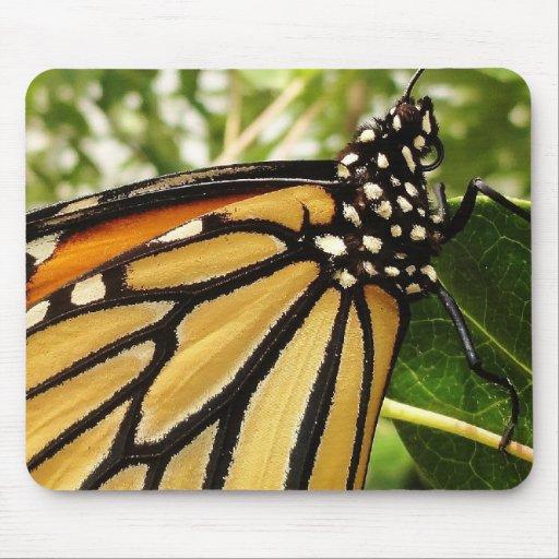 Cojín de ratón de la mariposa de monarca tapete de ratones