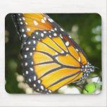 Cojín de ratón de la mariposa de monarca alfombrillas de raton