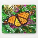 Cojín de ratón de la mariposa de monarca alfombrillas de ratón