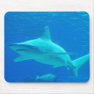 Cojín de ratón de la natación del tiburón alfombrilla de ratón