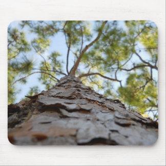 Cojín de ratón de la opinión de árbol tapete de ratones