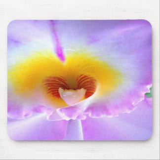 Cojín de ratón de la orquídea de la lavanda alfombrillas de raton