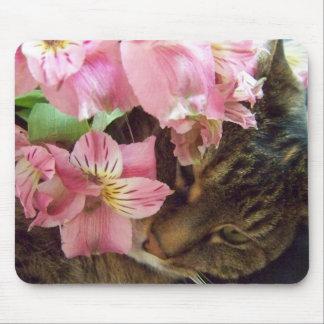 Cojín de ratón de las flores del gato que huele tapetes de raton
