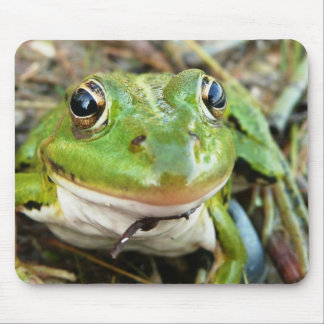 Cojín de ratón de las imágenes de la rana tapetes de raton