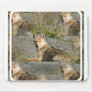 Cojín de ratón de las imágenes del coyote alfombrilla de ratones