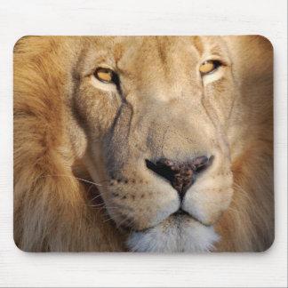 Cojín de ratón de las imágenes del león alfombrillas de ratón