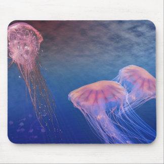 Cojín de ratón de las medusas mousepads
