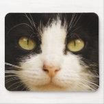 Cojín de ratón de los ojos de gato alfombrillas de ratón