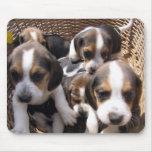 cojín de ratón de los perritos del beagle tapetes de ratones
