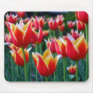 Cojín de ratón de los tulipanes 3 tapete de ratón
