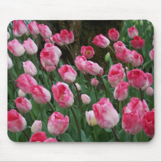 Cojín de ratón de los tulipanes alfombrillas de raton