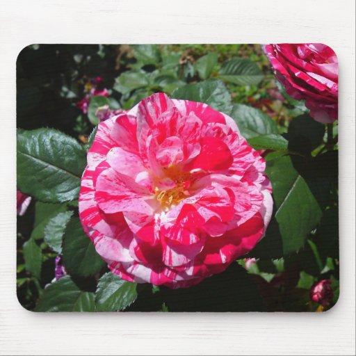 Cojín de ratón de mármol blanco y rojo de la flor alfombrillas de ratón
