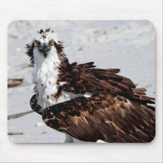 Cojín de ratón de Osprey Tapete De Ratón