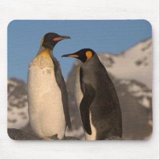 Cojín de ratón de rey pingüino tapete de ratones