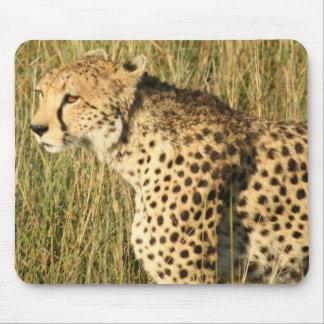 Cojín de ratón de vagabundeo del guepardo alfombrillas de ratones