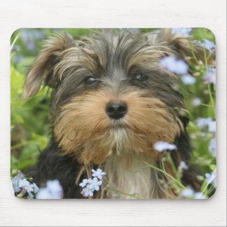 Cojín de ratón de York Terrier Tapetes De Raton