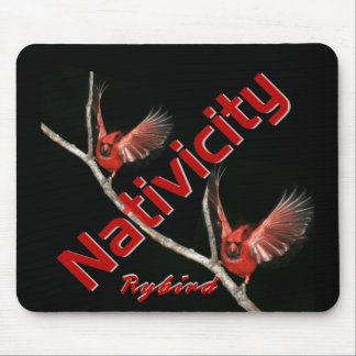 Cojín de ratón del Album Art de Nativicity por Ryb Tapetes De Raton