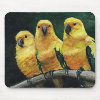 "Cojín de ratón del arte del pájaro de ""tres Sun Co Tapete De Raton"