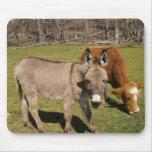Cojín de ratón del burro y de la vaca alfombrilla de ratones