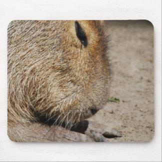 Cojín de ratón del Capybara Mouse Pads