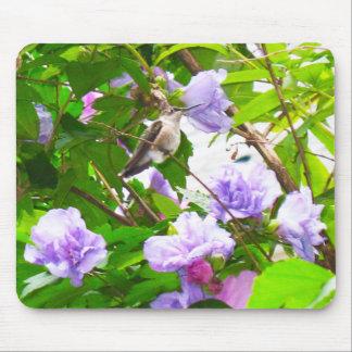 Cojín de ratón del colibrí 2 (horizontal) alfombrillas de raton