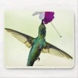 Cojín de ratón del colibrí tapetes de ratón