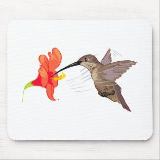 Cojín de ratón del colibrí tapetes de raton