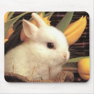cojín de ratón del conejito 10 tapetes de ratón