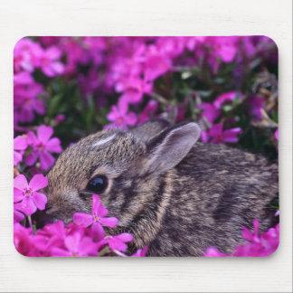 cojín de ratón del conejito 12 mousepad