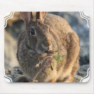 Cojín de ratón del conejo alfombrillas de raton