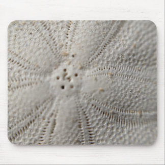 Cojín de ratón del dólar de arena tapetes de raton