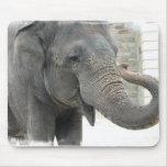 Cojín de ratón del elefante el tocar la trompeta tapetes de ratón