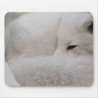 Cojín de ratón del Fox ártico el dormir Alfombrillas De Raton