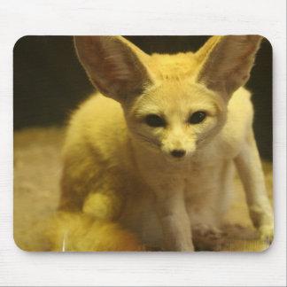 Cojín de ratón del Fox de Fennec Tapetes De Ratones