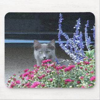 Cojín de ratón del gatito de la flor alfombrillas de ratón