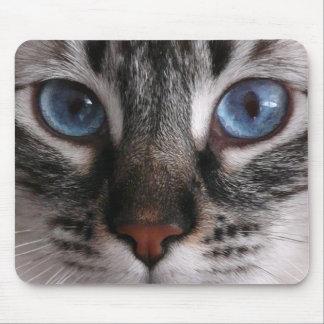 """Cojín de ratón del gatito de los """"ojos azules que  tapetes de raton"""