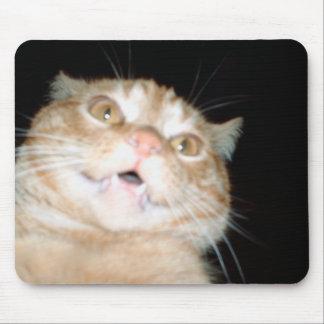 Cojín de ratón del gatito mouse pad
