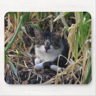 Cojín de ratón del gatito tapetes de raton