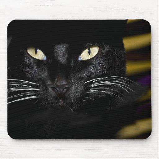 Cojín de ratón del gato alfombrilla de ratón