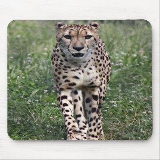 Cojín de ratón del guepardo tapetes de raton