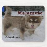 Cojín de ratón del Malamute de Alaska Alfombrillas De Ratón